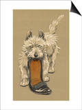 White Scots Terrier with a Black Slipper or Shoe Prints by Cecil Aldin