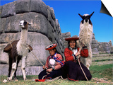 Local Indian Women with Domestic Llamas, Sacsayhumman, Cusco, Peru, South America Posters by Pete Oxford