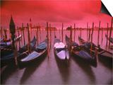 Gondolas, Venice, Italy Art by Frank Chmura