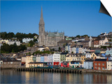 Immigrant Embarkation Harbour, Terraced Houses and St Colman's Cathedral, Cobh, Ireland Poster