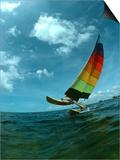 Catamaran Sailing, Biscayne Bay, Miami, FL Posters by Pat Canova