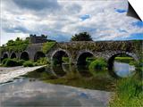 13 Arch Bridge over the River Funshion, Glanworth, County Cork, Ireland Art