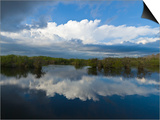 Reflection of Clouds on Water, Everglades National Park, Florida, USA Prints by  Panoramic Images