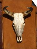 Skull, Santa Fe, NM Posters