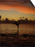Woman Doing Yoga in Water at Sunset, Tahiti Art by Barry Winiker