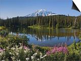 Reflection of Mountain and Trees in Lake, Mt Rainier National Park, Washington State, USA Print