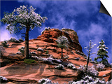 Clearing Winter Storm, Zion National Park, UT Art by Russell Burden