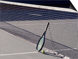 Tennis Racquet Against Net with Ball Posters by Mitch Diamond