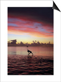 Woman Doing Yoga by Ocean at Sunset Print by Barry Winiker