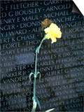 Vietnam War Memorial, Washington DC Prints by Jennifer Broadus