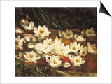 Waterlilies Prints by William Jabez Muckley