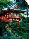 Japanese Tea Garden, San Francisco, CA Prints by Daniel McGarrah