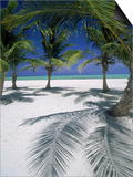 Playa Juanillo, Dominican Republic Print by Timothy O'Keefe
