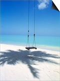 Swing on the Beach Above Palm Tree Shadow Posters by Green Light Collection