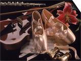 Chaussons de danse classique, violon, flûte et fleur Posters