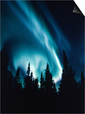 Northern Lights in Night Sky Posters
