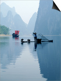 Fishing with Cormorants, Li River, China Prints by Inga Spence