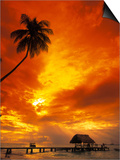 Sunset at Pigeon Point, Tobago, Caribbean Posters by Terry Why