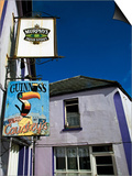 Pub Signs, Eyeries Village, Beara Peninsula, County Cork, Ireland Poster
