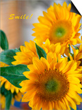 Smile: Sunny Sunflower Posters by Nicole Katano