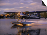 Float Plane Landing, AK Posters by Jim Oltersdorf