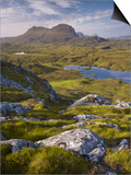 Bog Wetlands with Suilven Mountain at Dawn, Assynt Mountains, Highland, Scotland, UK, June Poster by Joe Cornish