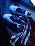 Ballet Shoes Poster by Dan Gair