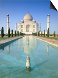 The Taj Mahal, Unesco World Heritage Site, Agra, Uttar Pradesh State, India Prints by Gavin Hellier