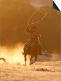 Cowboy Galloping While Swinging a Rope Lassoo at Sunset, Flitner Ranch, Shell, Wyoming, USA Print by Carol Walker