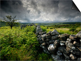 Dark Storm Clouds Above Stone Wall Near Combestone Tor, Devon, Dartmoor Np, UK Art by Ross Hoddinott