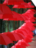 Umbrella Lights, Kunming, China Poster by Hal Gage