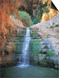 Shulamit Fall at En Gedi Reserve, Israel Prints by Barry Winiker