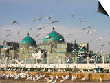 The Famous White Pigeons, Shrine of Hazrat Ali, Mazar-I-Sharif, Balkh Province, Afghanistan Poster by Jane Sweeney