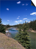 Bow River at Mount Temple Viewpoint on the Trans-Canada Highway, Banff National Park, Alberta Prints by Pearl Bucknall