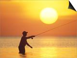 Fly Fisherman at Sunrise, Keys, Florida, USA Prints