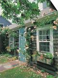 Summer Flower, Doorway, Nantucket, MA Poster by Walter Bibikow