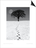Winter Moon Prints by Ilona Wellman