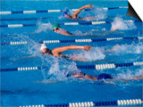 Female Swimmers Competing in a Freestyle Race Poster