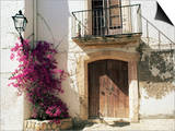 Picturesque Doorway, Altafulla, Tarragona, Catalonia, Spain Posters by Ruth Tomlinson