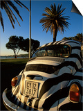 Back of a Beetle Car Painted in Zebra Stripes, Cape Town, South Africa, Africa Posters by Yadid Levy