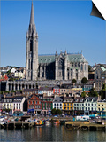 Immigrant Embarkation Harbour, Terraced Houses and St Colman's Cathedral, County Cork, Ireland Prints