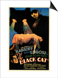 The Black Cat Prints
