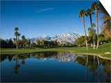 Pond in a Golf Course, Desert Princess Country Club, Palm Springs, Riverside County, California Posters