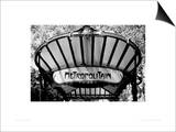 Metro Entrance, Paris Prints by Heiko Lanio