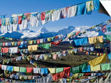 Prayer Flags, Himalayas, Tibet, China Posters by Ethel Davies