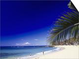 Poipu Beach, Kauai, HI Print by Elfi Kluck