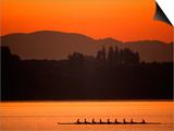 Silhouette of Men's Eights Rowing Team in Action, Vancouver Lake, Washington, USA Prints