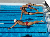Swimmers Starting a Race Art