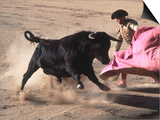 Matador with Pink Cape and Bull, Mexico Posters by Edward Slater