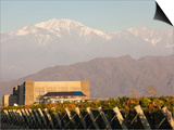 Winery in a Field with Mountains in the Background, Andes, Bodega Septima, Lujan De Cuyo Prints